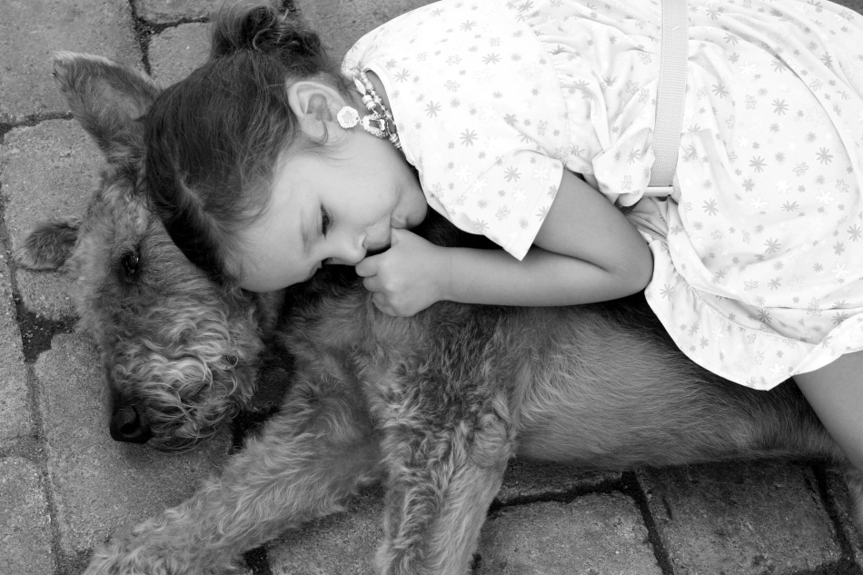 Anna rests on Murphy the Airedale Terrier