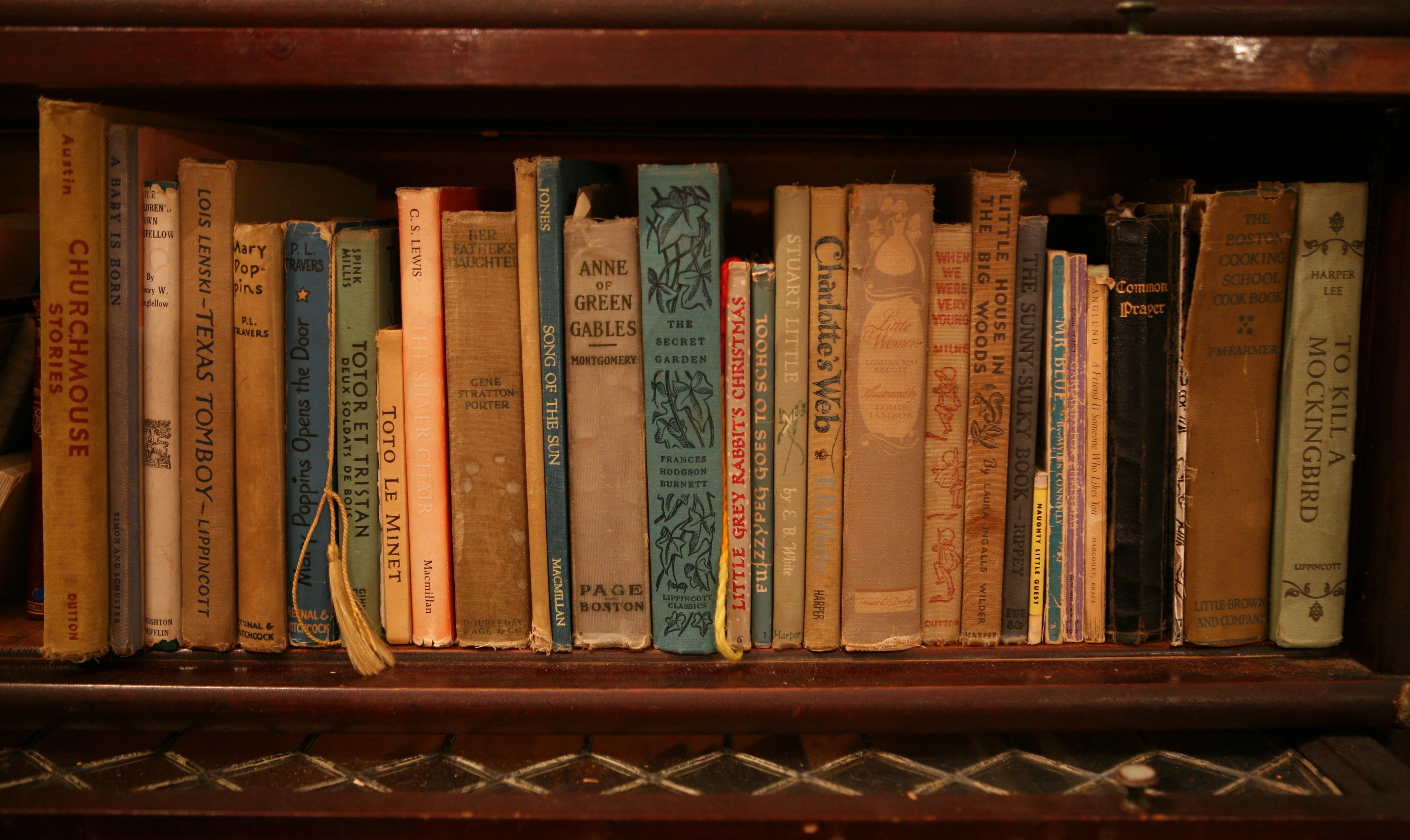 Indelible Insight: Annie Sloan Chalk Paint Bookshelf ... |Old Bookshelf With Books