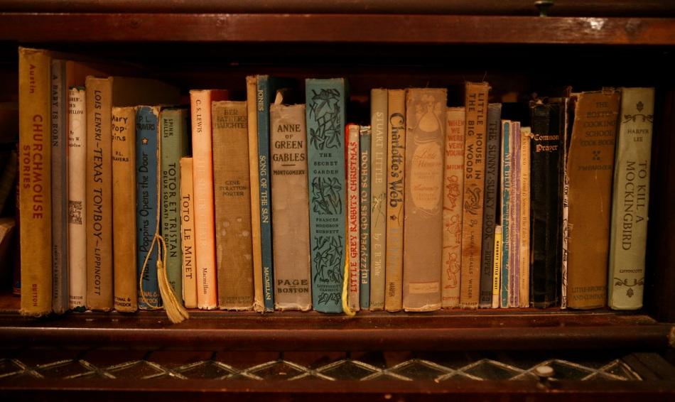 My Favorite Bookshelf Image