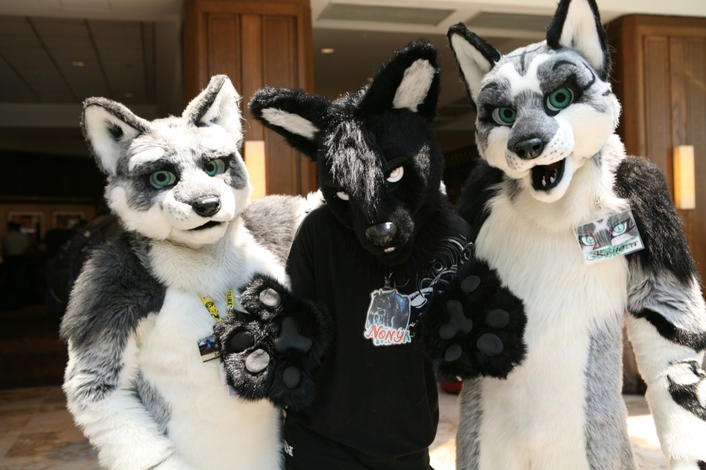 Three Fursuited Friendly Furries