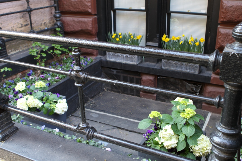 Greenwich Village Spring Flowers