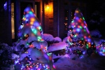 Christmas Lights in Snow 1 (1)