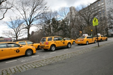 Taxi Cabs at Red Light