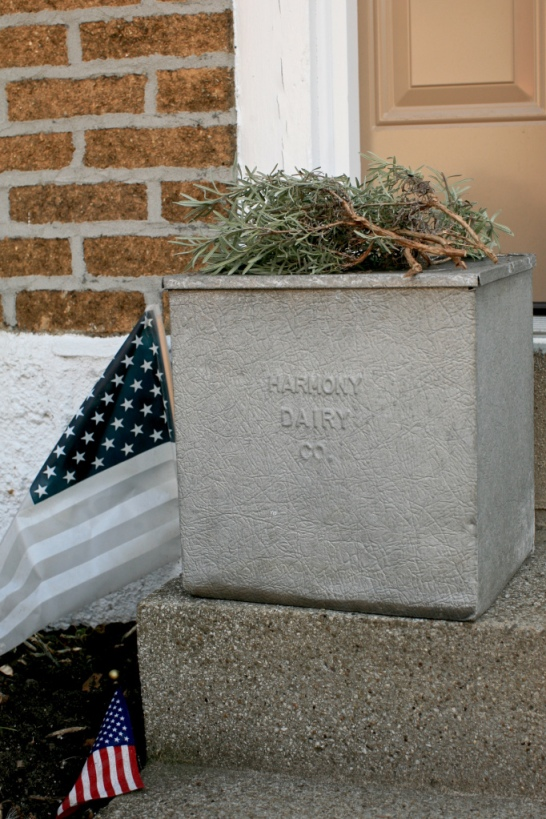 Dorothy's Milkbox