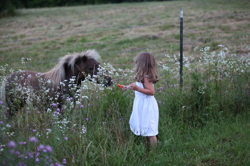 Maura and the little horse