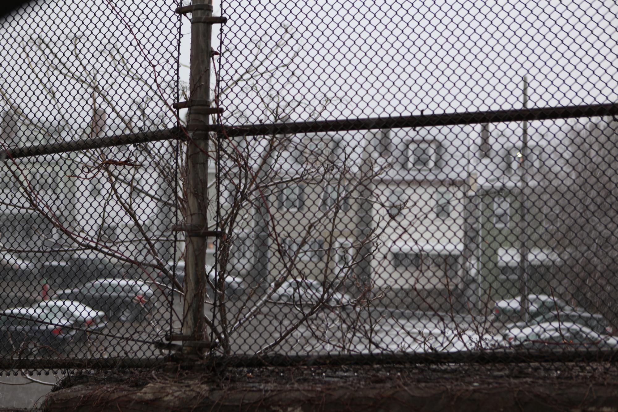 chain link fence ruth e hendricks photography