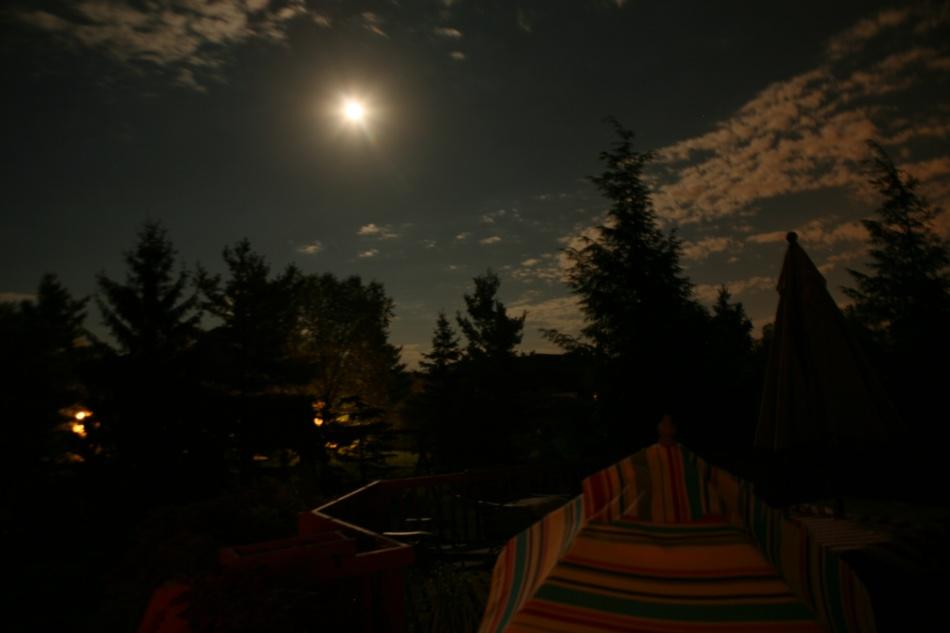 backyard moonlight