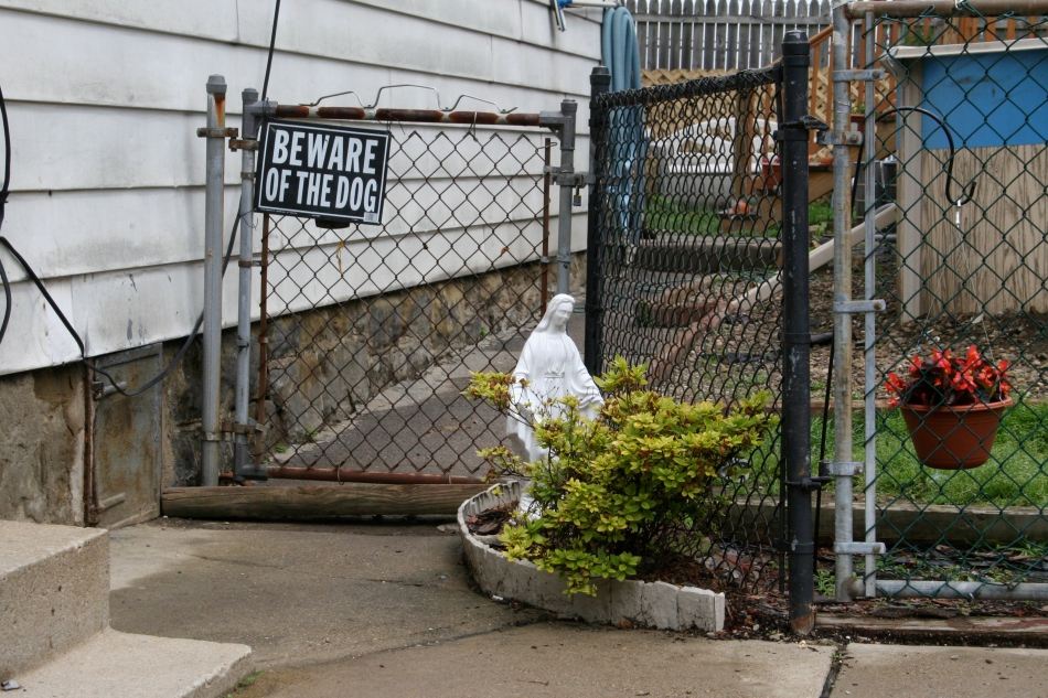 Our Lady and Beware of Dog