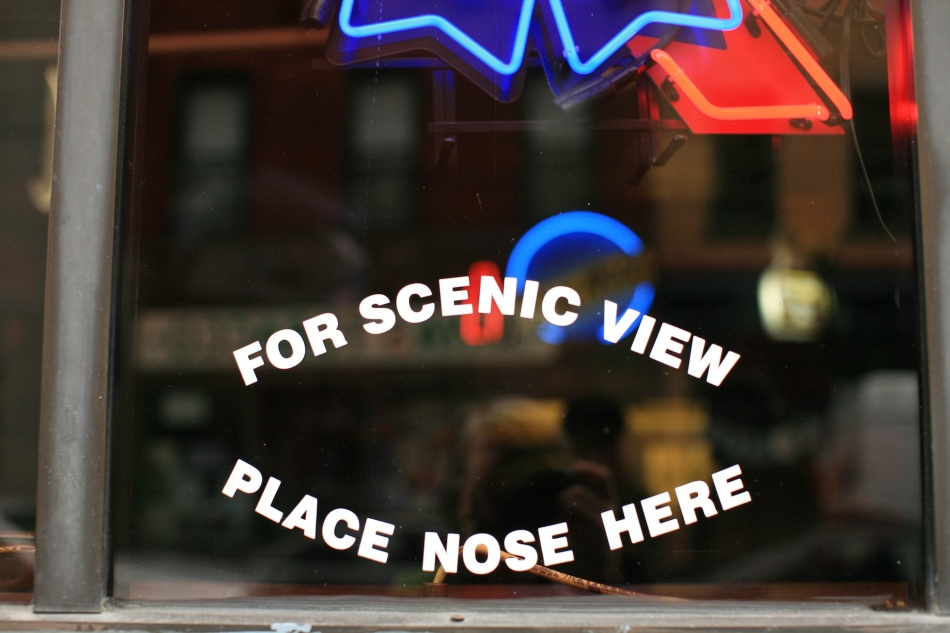 for scenic view window