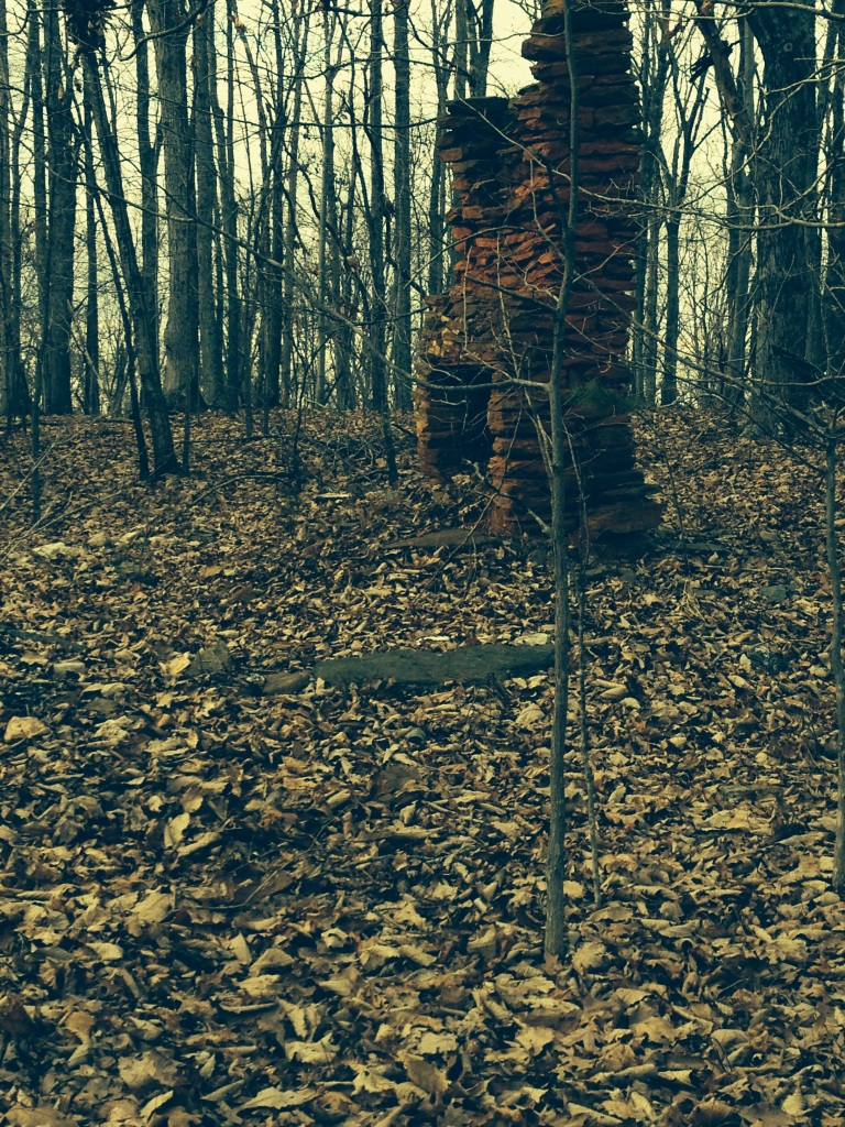 Chimney in the Virginia Woods