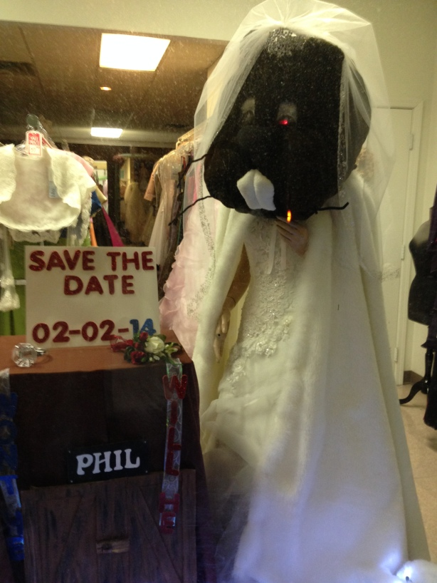 Groundhog Bride