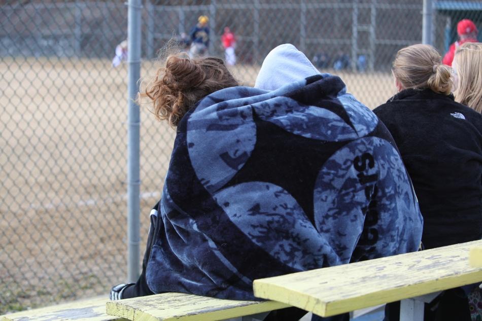 baseball fans 3