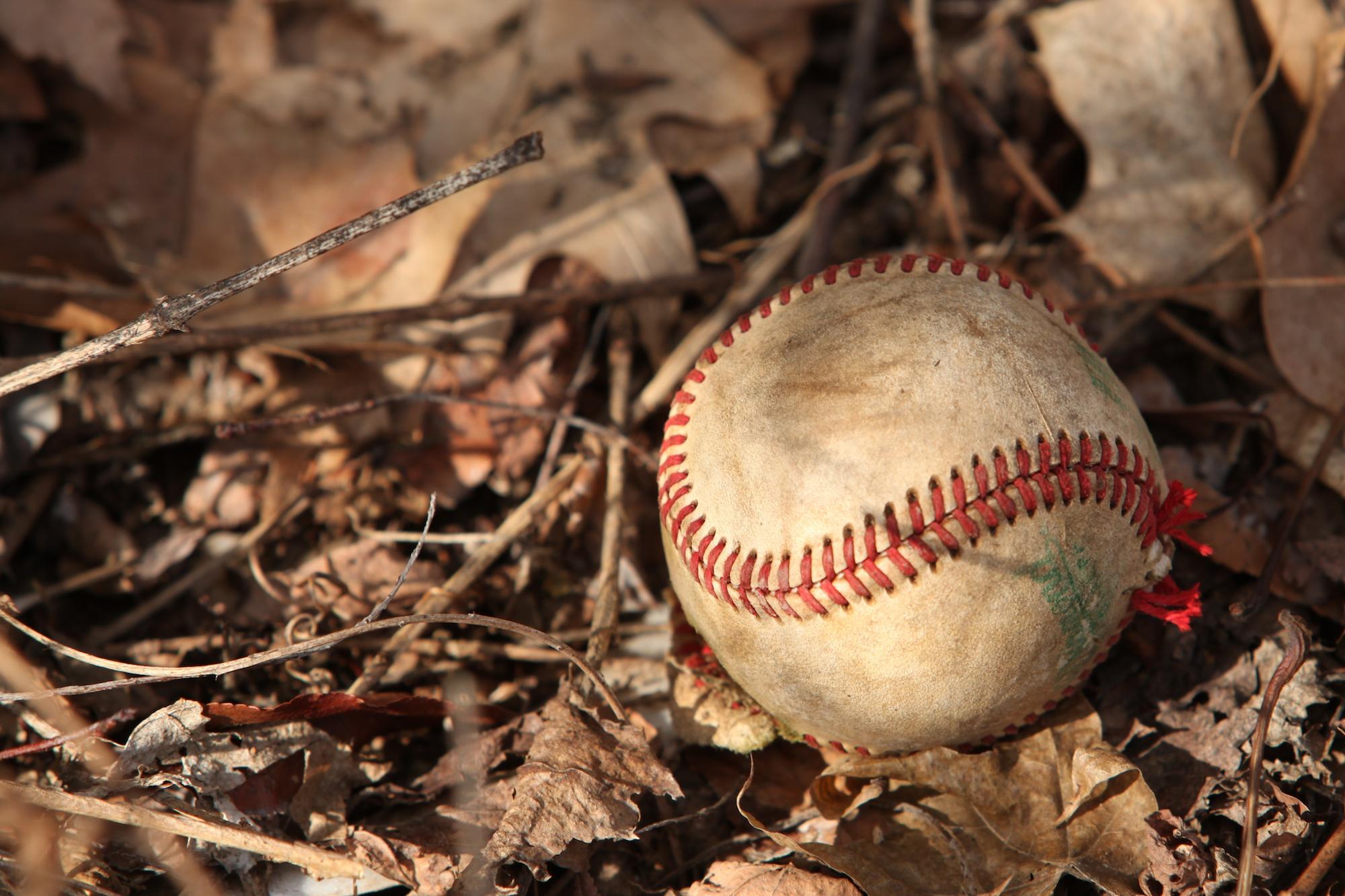 Baseball Leather Iphone  Case