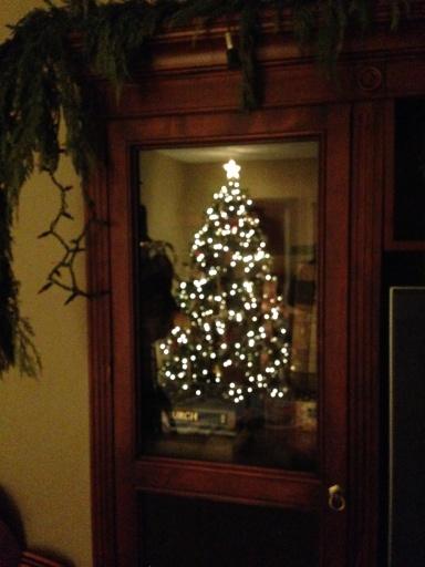 the tree in the glass door