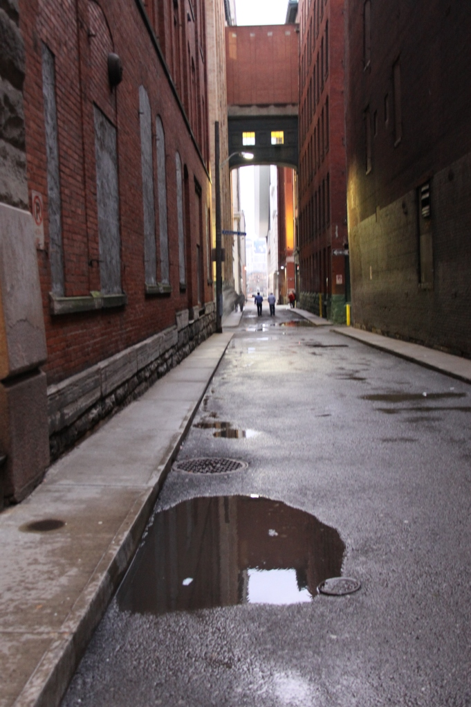 puddle in alley