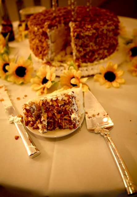 Prantl's Burnt Almond Torte