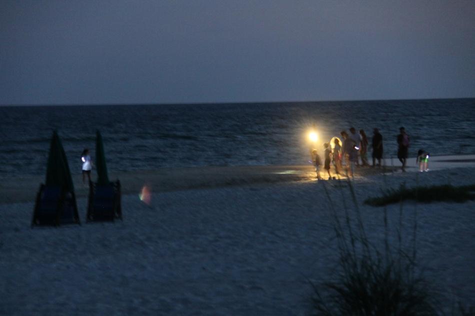 people on beach at night