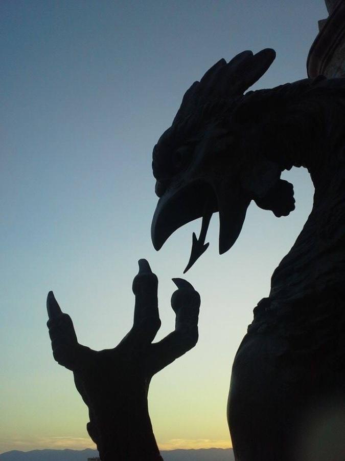 Dragon Silhouette Photo by Vedrana