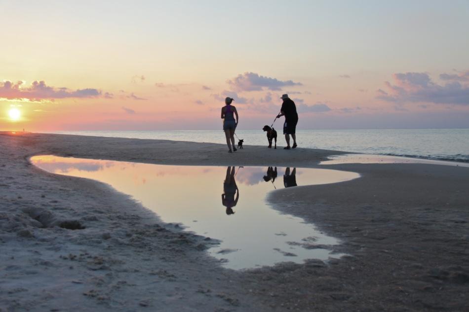 sunrise dogwalk