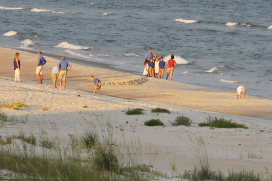 watching beach photographers 2