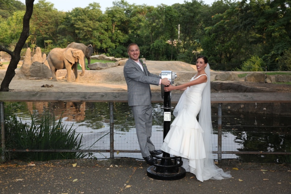 Bridal Party with Elephants