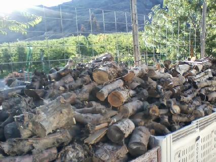 bins of wood