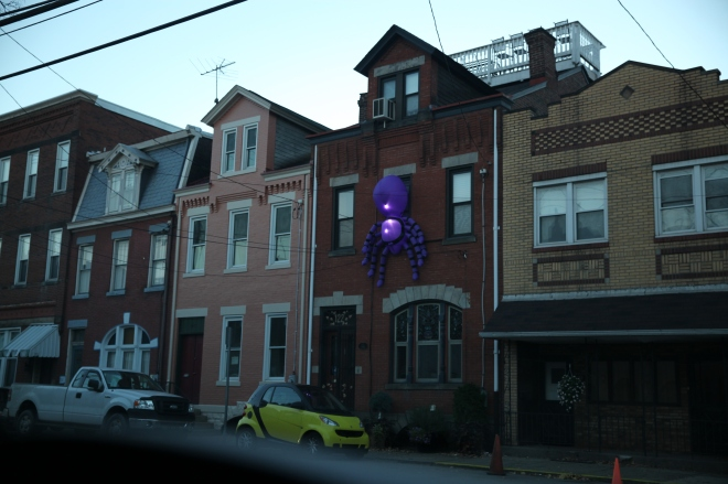 Purple SPider