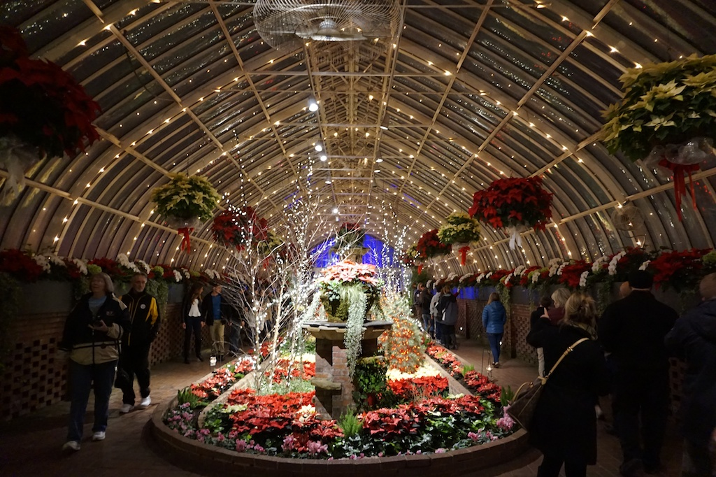 Winter Light Garden And Flower Show At Phipps Conservatory