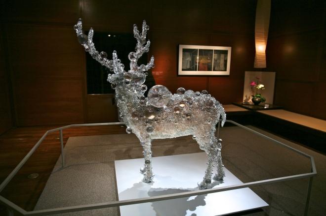taxidemied deer (1)