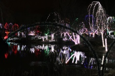 Zoo lIghts 2011