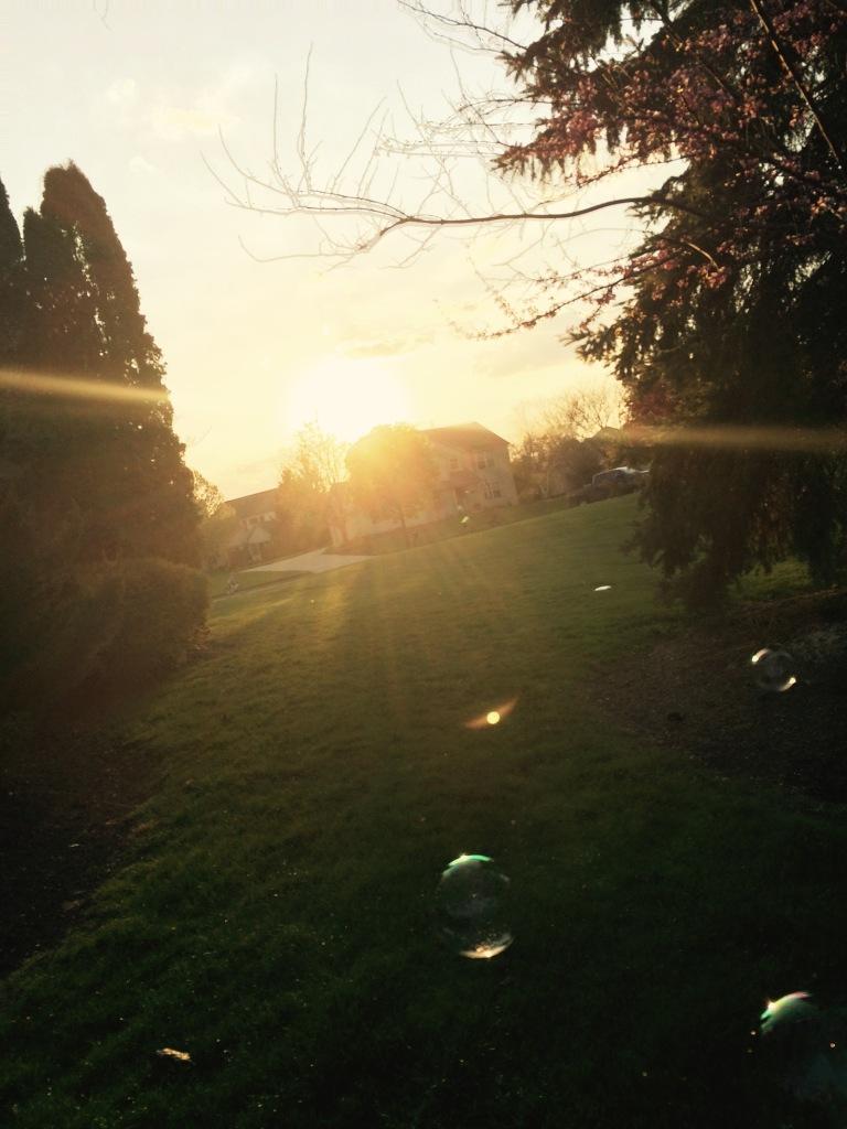 backlit bubbles
