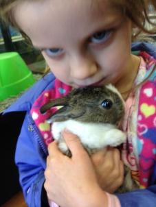 rabbit and maura
