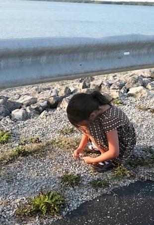 Anna picks up rocks
