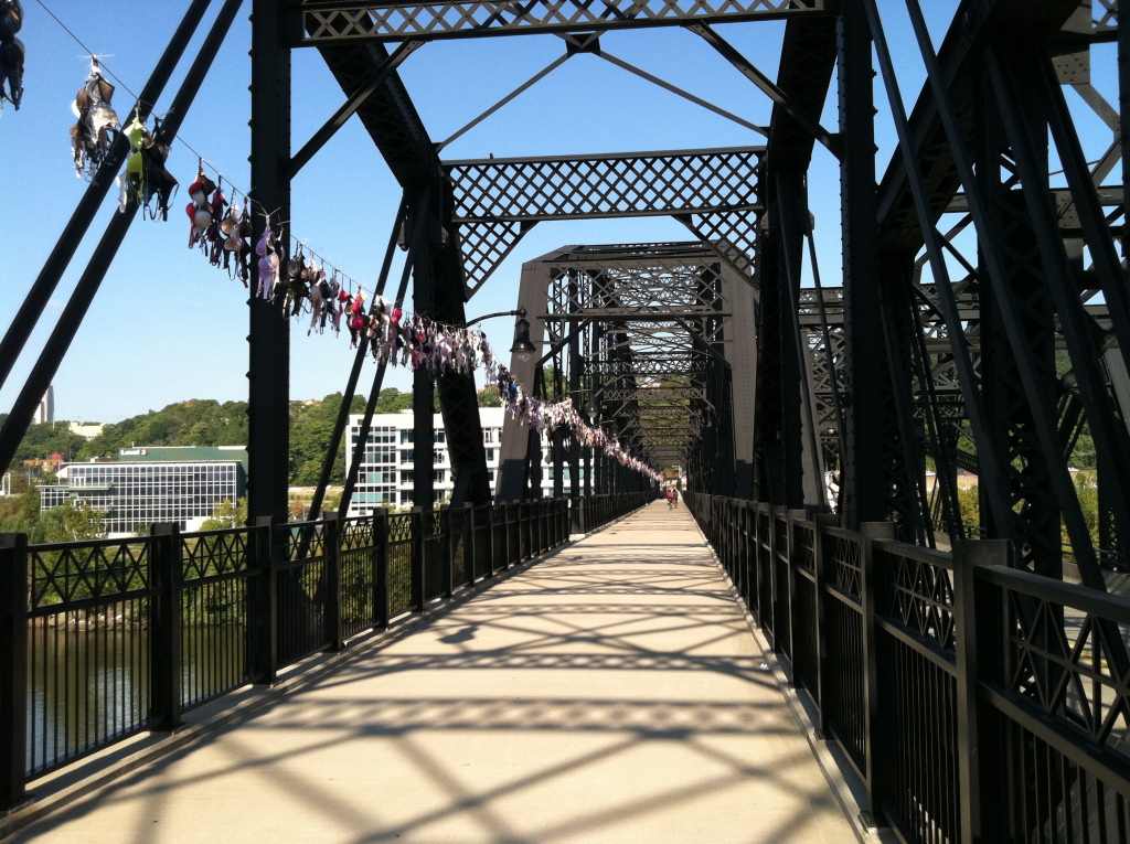 bras-across-the-bridge2